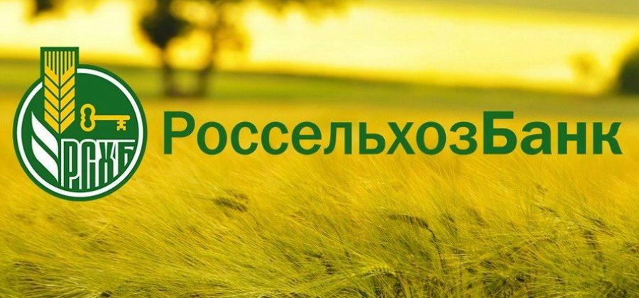 Россельхозбанк: инструкция по получению банковской гарантии